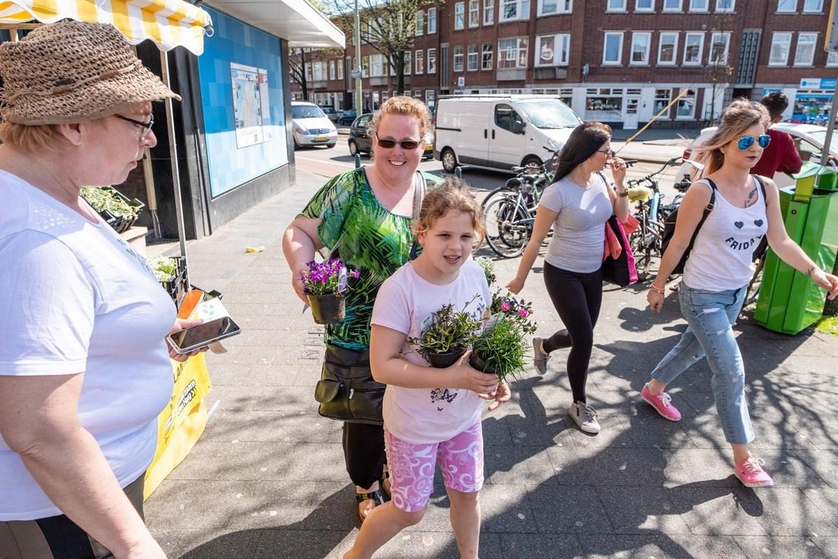 Tegels Den Haag : Ruil in laak een tegel in voor een mooie plant! het haagse groen